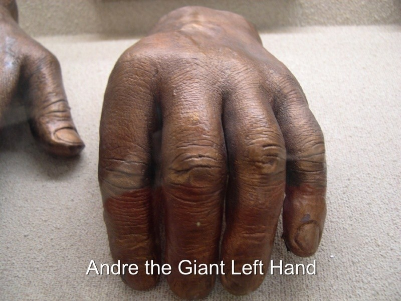 Andre The Giant Hand
